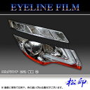 【松印】 アイラインフィルム エルグランド E52 後期 タイプ2