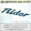 【松印】エンブレムフィルム タイプ6★セレナ C26 Rider グレ...