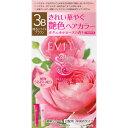 カネボウ化粧品 エビータ トリートメントヘアカラー 3B 45g+45g (医薬部外品)