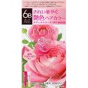 カネボウ化粧品 エビータ トリートメントヘアカラー 6B 45g+45g (医薬部外品)
