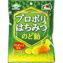 佐久間製菓 ロポリはちみつのど飴 70g その1