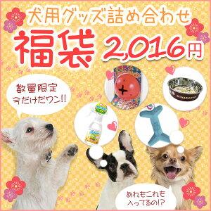 【歳末セール開催中】ワンちゃん用品 福袋 【2016年】