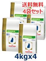 ロイヤルカナン猫用pHコントロールライト4kg(4袋セット)