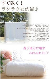 洗濯ごとに、ふわふわ毛布松並木の楽天1位★敏感肌にやさしい綿毛布シングル