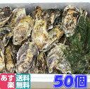 あす楽対応!牡蠣 クール送料無料!50個 宮城県産 殻付き 牡蠣 殻付き 牡蠣 殻付 1個牡蠣 加熱用 かきカキkaki 一粒牡蠣 松島牡蠣屋 BBQ 母の日 父の日