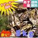 あす楽対応!牡蠣 5kg(約55粒)送料無料!宮城県産 殻付き 牡蠣 殻付き 無選別牡蠣 …