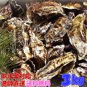あす楽対応!牡蠣 3kg(約38粒)送料無料!宮城県産 殻付き 牡蠣 殻付き 無選別牡蠣 牡蠣 殻付 カキ 加熱用 一年子 松島牡蠣屋 お花見にGWBBQに父の日母の日バーベキューに