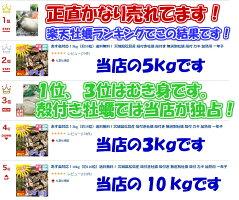 宮城県松島産殻付き牡蠣生牡蠣殻付きSSサイズ10kgかきカキkaki