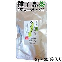 【2019年産】種子島の緑茶ティーバッグ『やぶきた』40g(2g×20袋入り)松下製茶