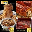 【期間限定5999円】鰻・牛めしコンボセット30個(プレミア...