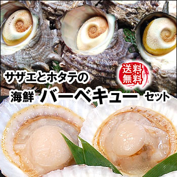 【送料無料】ホタテ(片貝)とサザエの海鮮バーベキューセット大人数用【冷凍】各25個入(さざえ、ほたて、帆立、bbq)【smtb-k】【kb】