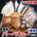 いつでも楽しめる!国産のみ使用!6種の海鮮バーベキューセット【冷凍】(さざえ、ほたて、帆立...