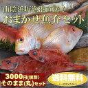 【送料無料】山陰直送「朝とれおまかせ鮮魚・魚介3000円(税