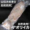 アオリイカ(冷凍) 特大 約1.0-1.2kg前後 1杯入(胴長さ:約27-30cm程度)【浜坂産】(あおりいか・水いか・水イカ・もいか・モイカ・烏賊・高級)