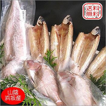 (送料無料)日本海漁火セット(冷凍)ギフトに(アゴ,干物,白いか,鯛)敬老の日ギフトに、お中元、バーベキューに
