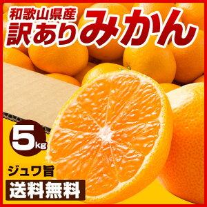 【本気祭】送料無料 和歌山県産 訳あり みかん 5kg [ ミカン 蜜柑 みかん 柑橘 フルー…