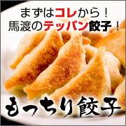 当店自慢の皮がもっちり!家族向けにも餃子パーティーにも!調理説明書入りもっちり餃子40個【...