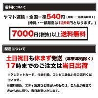 【クーポンで500円オフ】モンスターソフトダーツグローバルワークアメリカフィアー
