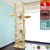 キャットタワー 突っ張り キャットツインタワー 全高235~255cm EAGLE TWIN TOWER 組み立て 設置 簡単 爪とぎ 部屋 階段 ハウス付き スクラッチ 多頭 猫 ねこ ペット ペット用品 ペットグッズ ワイド タイプ おしゃれ おすすめ 人気