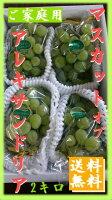 【ご家庭用フルーツ】岡山ぶどう/ブドウ『マスカット』2キロ3〜4房(種あり)
