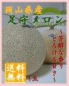 岡山県産 足守メロン【マスクメロン】【お中元/お祝い】【フルーツ】