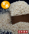 新米令和元年産岡山県産岡山玄米10キロ