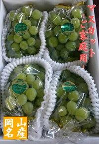 【予約販売】【ご家庭用フルーツ】岡山ぶどう/ブドウ『マスカット』2キロ3〜5房(種あり)