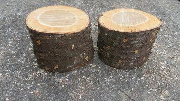 (お試し)自家製なめこ栽培セット短木2本セット