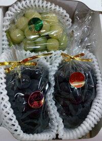 【予約販売】旬果セット(ぶどう詰め合せ3房) 【ご進物・贈答用フルーツ】