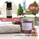 【ランキング受賞】レッド バスソルト 500g ブレンド エッセンシャルオイル 10ml ギフトセット 自宅ケア...