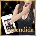 【5個+1個サービス 計6個セット】Splendida 〜スプレンディ...