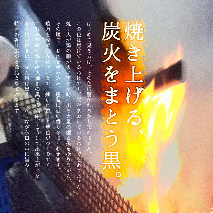 宮崎名物 焼き鳥 鶏の炭火焼100g×6 手仕込み+冷凍でなければ出来なかった焼き立てのお店の味