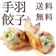 【送料無料】手羽先餃子 10本入 手羽餃子 冷凍