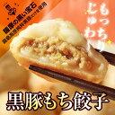 おもちのぎょうざ 黒豚もち餃子 20g×12個 もっちりじゅわ〜の新食...