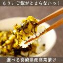 宮崎県東諸県郡都農町産。肉厚高菜を100%使用、おすず高菜。こだわり製法で作り上げた高菜漬け...