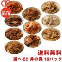 選べる 福袋 丼の具 (10P) 【牛肉 8種類の具材からお好きなものを10セット選べる・牛カルビ丼