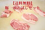 【元祖】送料無料十勝野ポーク一頭お試しセット