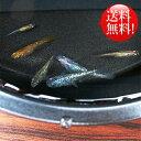 (メダカ) めだか おまかせ 虹色ラメめだかミックス 未選別 稚魚(SS〜Sサイズ) 10匹セット ミックス 虹色ラメ メダカ 淡水魚