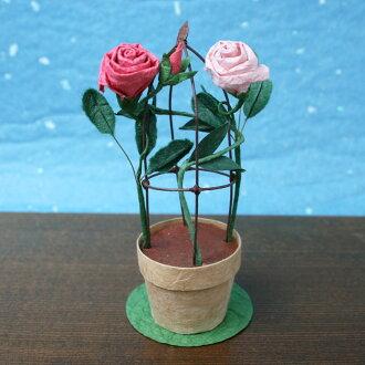 めでたや遊びつるバラ