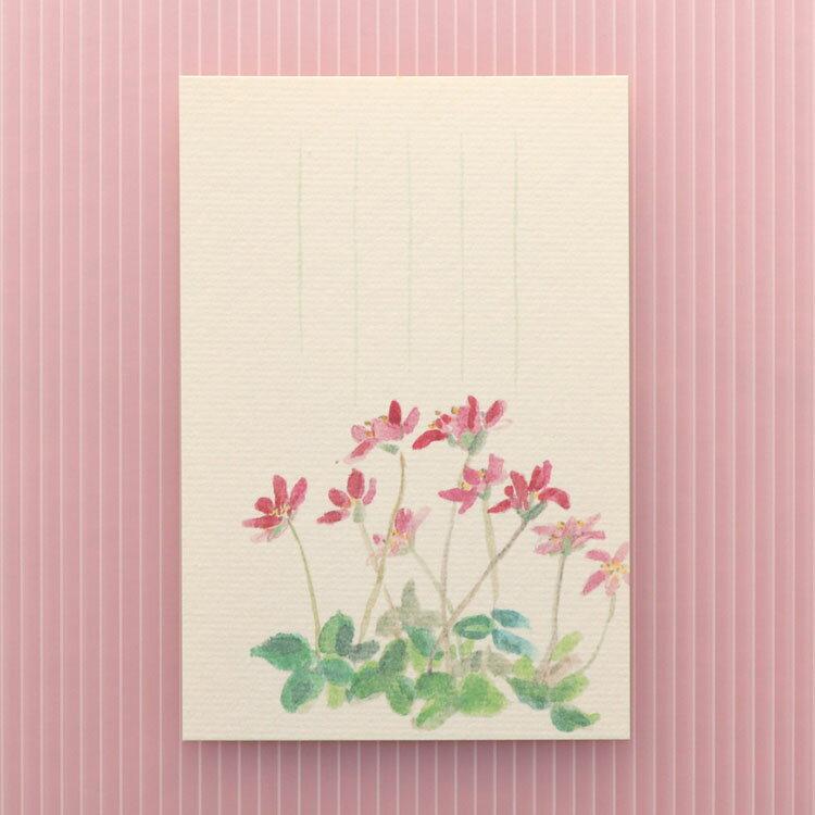 季節のはがき[春]三角草(みすみそう)