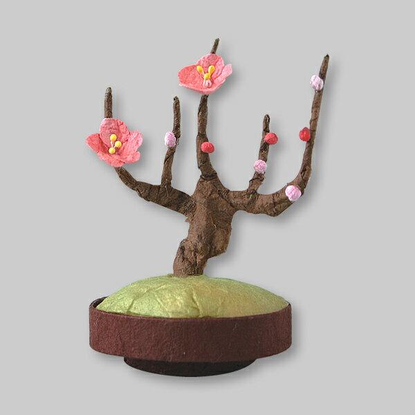 ミニ盆栽 梅