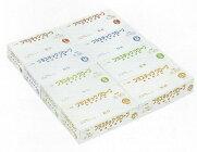 プラスチックグローブ(手袋)エコパックパウダー(粉付)100枚×1箱
