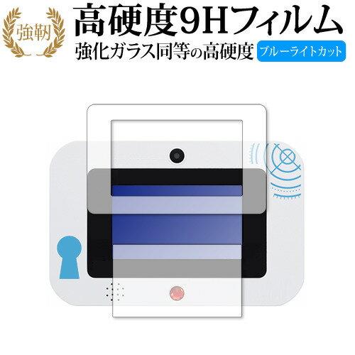 PCアクセサリー, 液晶保護フィルム  Pad SEGA toys 9H