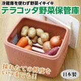 冷蔵庫を使わず野菜イキイキ テラコッタ野菜保管庫