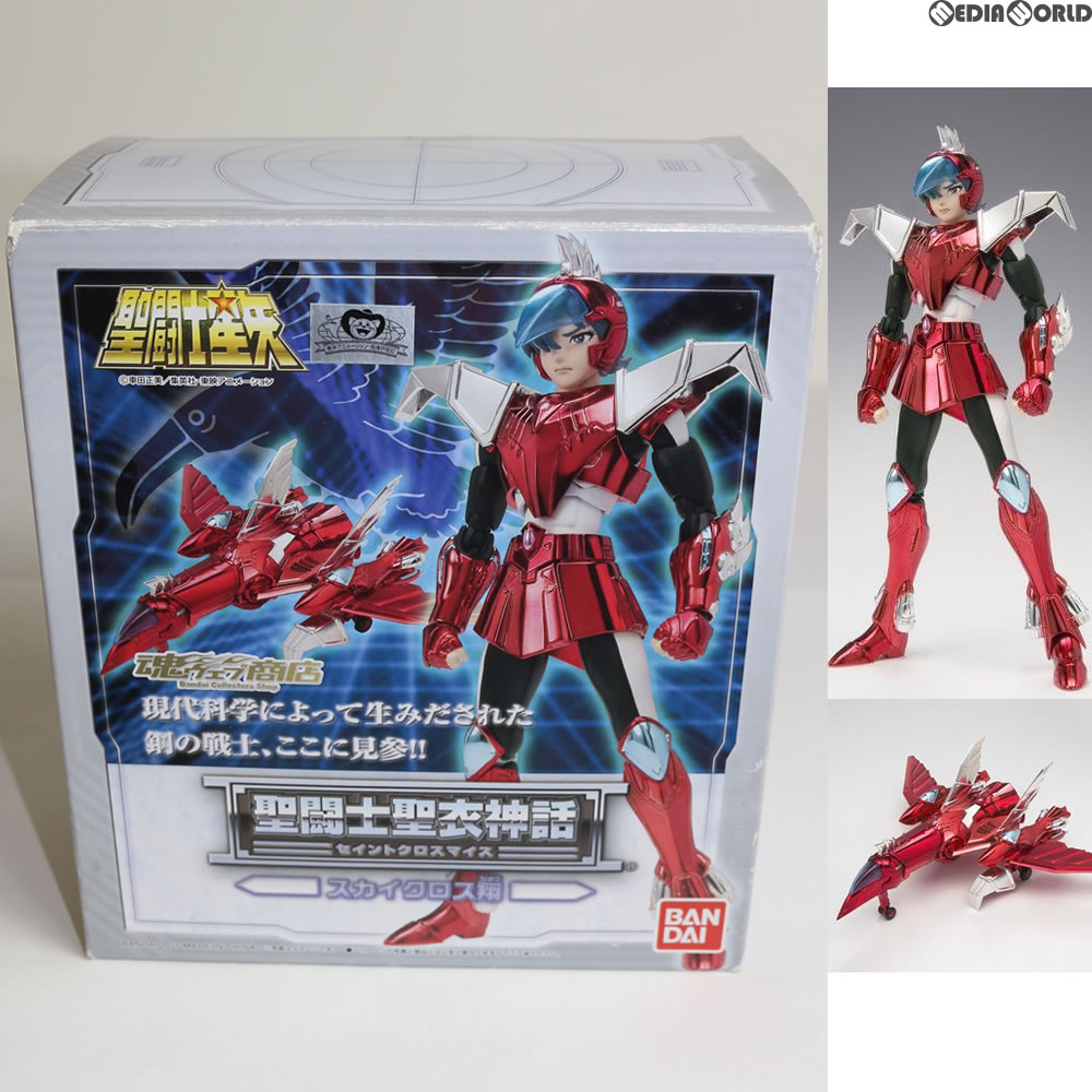 Knights Of The Zodiac toys FIG (20110531)