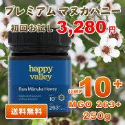 初めてさん限定お試しマヌカハニーUMF10+250gニュージーランド産蜂蜜UMF協会認定分析証明書付無添加非加熱天然生はちみつ【送料無料】