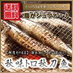 さんま 生 『 【送料無料】秋味トロ秋刀魚/2kg前後(12尾〜15尾) 』 秋刀魚 サンマ 刺身用 秋季限定