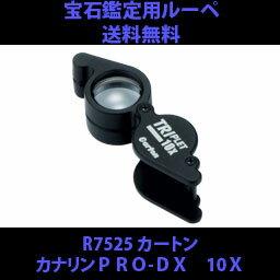 カートンカリナンPRO-DX10X