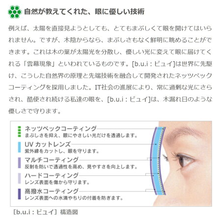 眼の疲れを和らげる!眼精疲労予防レンズビュイ【BUI】セットV4319超弾性樹脂【パソコン作業に最適】