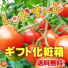 【送料無料】トマトギフト★フルーツミディ・レッドオーレ♪化粧箱入れ・トマト・ミニトマト